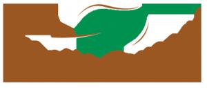 logo_amboise